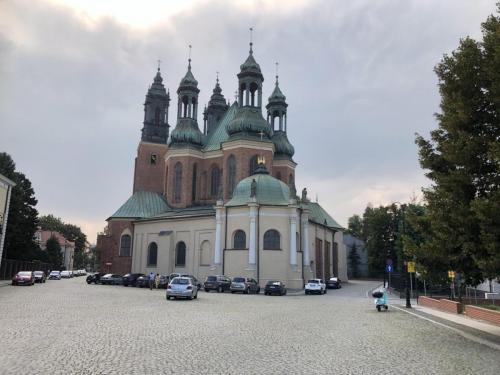 Katedra 28